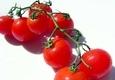 Pomidoras, raudonas, vyšninis